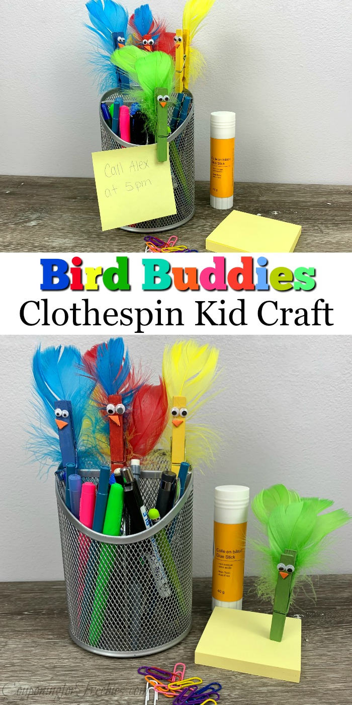 Bird buddies from clothespins at top and bottom with text overlay in the middle