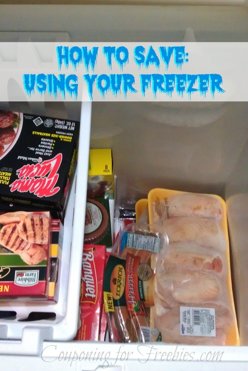 How to Save Using your Freezer