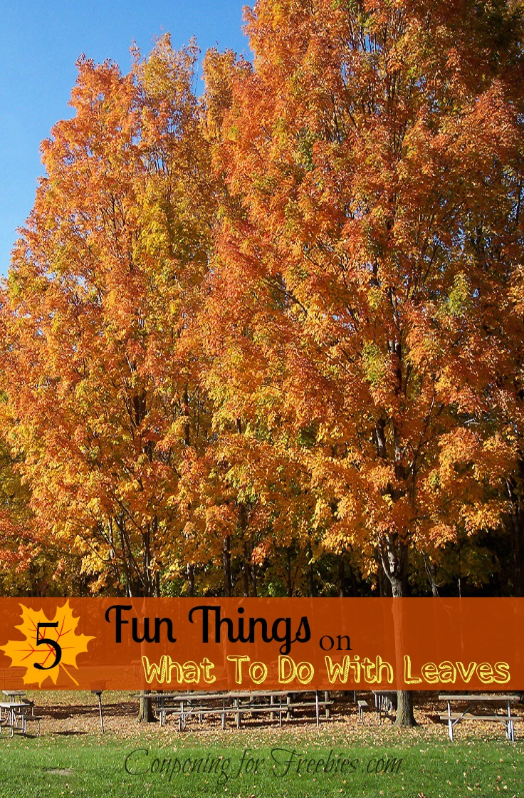 What To Do With Leaves: Five Fun & Cool Things To Do With Leaves. Leaves are so fun, fresh, and above all, free! If you have a yard full of colorful....